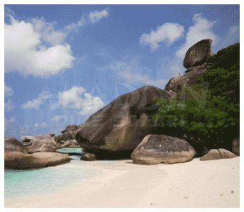 Diving at the Similan National Marine Park in Thailand